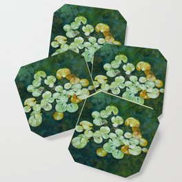 Tranquil lily pond Coaster