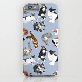 Lounging Cats in Blue iPhone Case