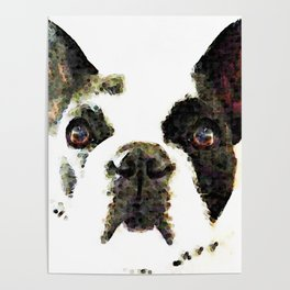 French Bulldog Art - High Contrast Painting by Sharon Cummings Poster