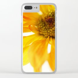 A Little Bit Sun in the Cold Time Clear iPhone Case
