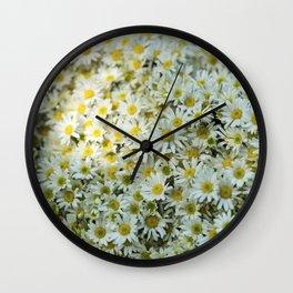 White Daises Wall Clock