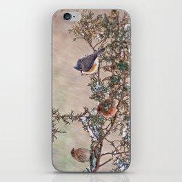 Three Little Birds in a Blizzard iPhone Skin