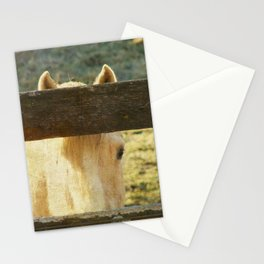 Peek-A-Boo Horse Stationery Cards