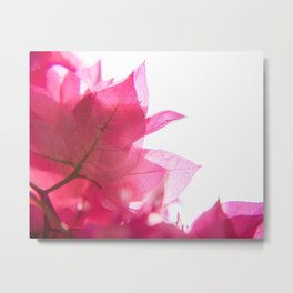 Bright Bougainvillea Metal Print