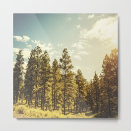 yellowstone national park usa Metal Print