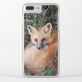 Beautiful Fox Clear iPhone Case