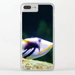 Picasso Triggerfish Clear iPhone Case
