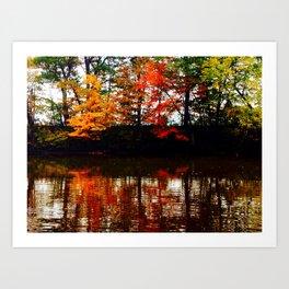 All Four Seasons Art Print