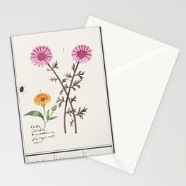 Pink flower unknown and marigold Calendula officinalis (1596-1610) by Anselmus Botius de Boodt Stationery Cards