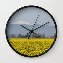 DAFFODIL FIELD AND MOUNT BAKER IN THE SKAGIT VALLEY  Wall Clock