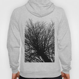 Branches 6 Hoody