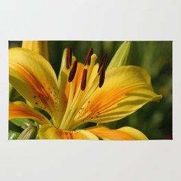 Beautiful Yellow Lily Rug
