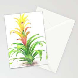 Bromeliad - Tropical plant Stationery Cards