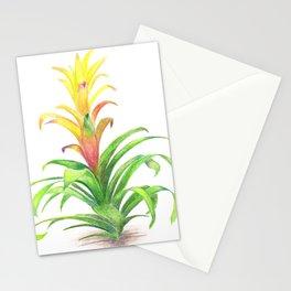 Bromeliad - Tropical plant Stationery Cards