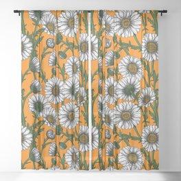 Daisies on orange Sheer Curtain