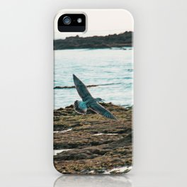 Seagull Flight by the beach iPhone Case