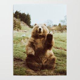Hi Bear Poster