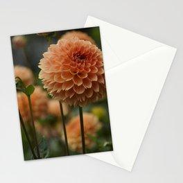 Orange Dahlia Stationery Cards