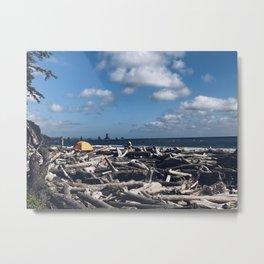 Drift Wood and Dreams Metal Print