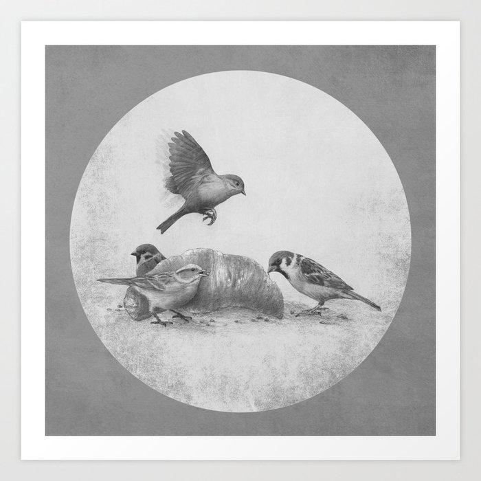 Parisian Sparrows  Art Print