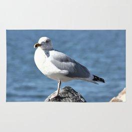 Seagull Rug