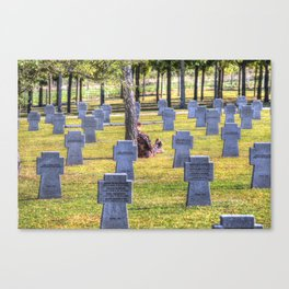 The Futility Of War Canvas Print