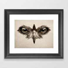 Hawk Eye Glare Framed Art Print