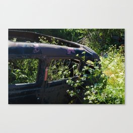 Parsley and rust Canvas Print
