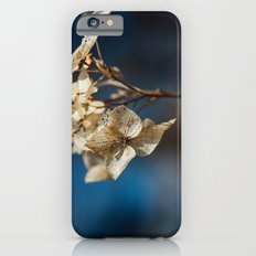 Summer's Ghost II iPhone 6s Slim Case