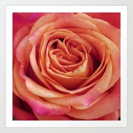 A Summer Bouquet 12 - orange rose Art Print