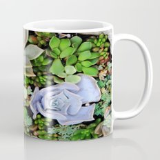 Collection of Succulents Mug