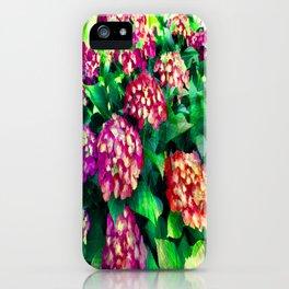 Garden Hydrangea - Raspberry Pink and Lavender iPhone Case