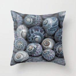 Beach Treasures Snail Shell Collection Throw Pillow