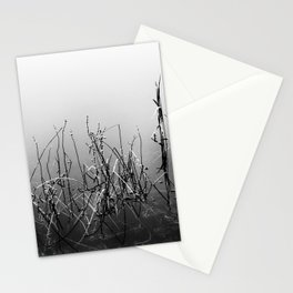 Echoes Of Reeds 3 Stationery Cards
