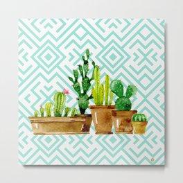 Cactus still life Metal Print