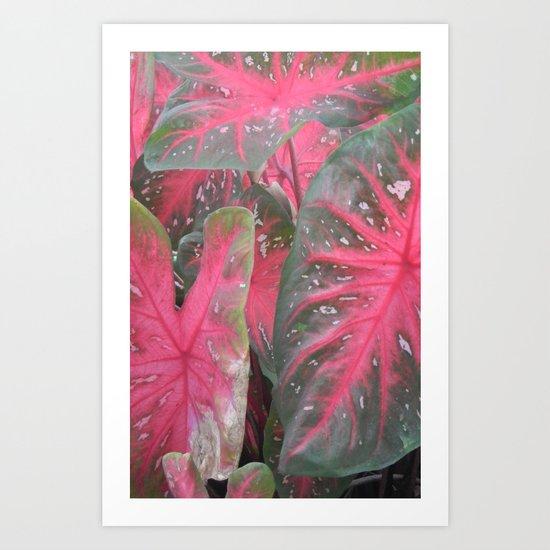 Pink Vertical Art Print