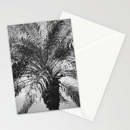 Palm Dreams Stationery Cards