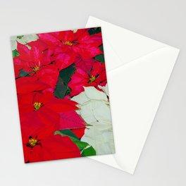Poinsettias, Olbrich, 5345 Stationery Cards