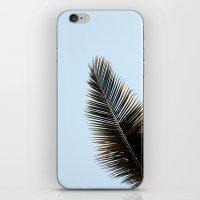 Palmera iPhone & iPod Skin
