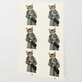 Kitten Dressed as Cat Wallpaper