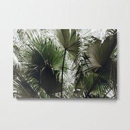tropical xxiii Metal Print