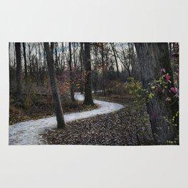 Stone Winding Path Rug