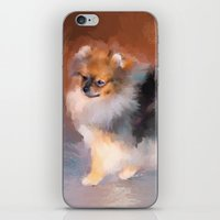 pomeranian iPhone & iPod Skins featuring Tiny Pomeranian by Jai Johnson