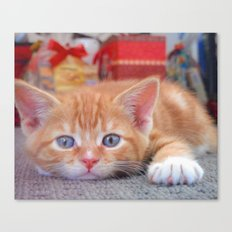 Cleo the Christmas Cat Canvas Print
