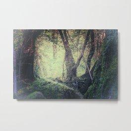 "Fairy-tale wood"" Metal Print"