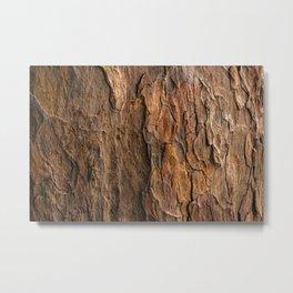 Bark Bark Metal Print