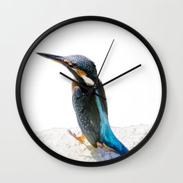 A Beautiful Kingfisher Bird Vector Wall Clock