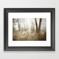 MIMICKED FORMS IN A MYSTERIOUS WOOD Framed Art Print