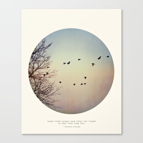 Caged Birds Canvas Print