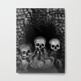 The Three Musketeers Metal Print